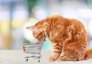mačak-u-web-trgovini